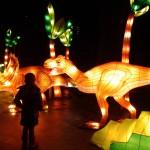 China dinosaur light